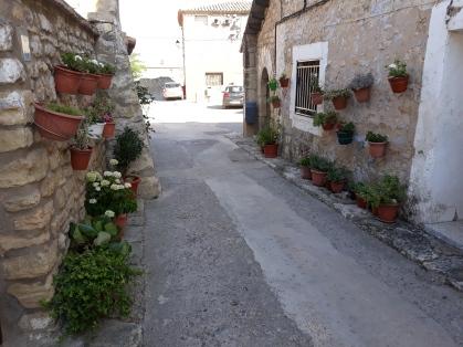 Calle pueblo